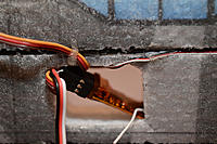 Name: DD4_7317.jpg