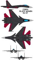 Name: COBRA SU-37.jpg