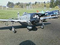 Name: war birds.jpg