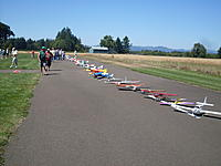 Name: Electric Goose 053.jpg