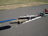 Name: Electric Goose 046.jpg