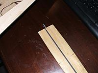 Name: DSCF4136.jpg