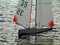 Name: Goose winged.jpg Views: 97 Size: 194.4 KB Description: