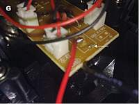 Name: HBg.jpg