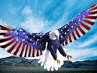 Name: Colbert_Eagle_Logo.jpg