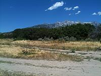 Name: BF4.jpg