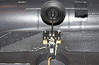 Name: IMG_4014.jpg