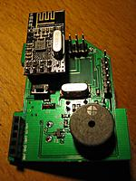 Name: IMG_9446.jpg