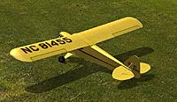 Name: RealFlight 6 Cub 100percent Crop.jpg