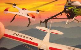 Phoenix RC 5 professional radio control flight sumulation