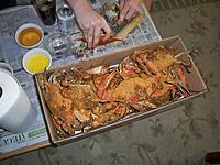 Name: finnishing up the build SR-9 039.jpg