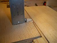 Name: flaps 138.jpg