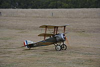 Name: DSC_0160.jpg