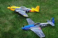 Name: DSC_7292.jpg