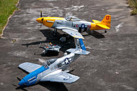 Name: DSC_7452.jpg