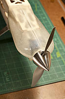 Name: DSC_8083.jpg