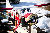 Name: DSC_8168.jpg
