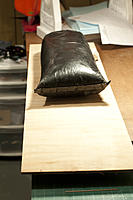 Name: DSC_8611.jpg