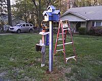 Name: dadsbirdhouse 3.jpg