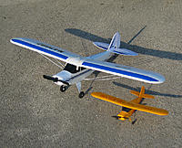 Name: Cub_and_Champ.jpg
