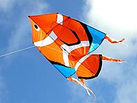 Name: Clownfish NT.jpg