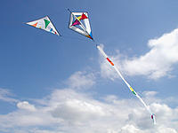 Name: Gardenkite 1.jpg
