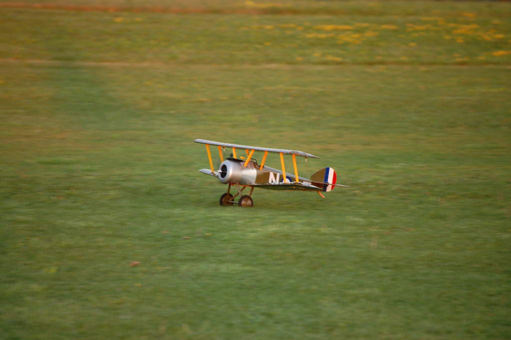 Name: DSC_0713.jpg