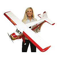 Name: electric-rc-airplanes-1.jpg