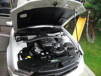 Name: DSCF0299.jpg