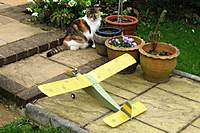 Name: Poppet 14 006.jpg