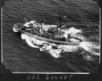 Name: Gannet underway 72.jpg