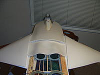 Name: f22 and breeding 025.jpg