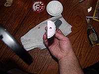 Name: DSCF1567.jpg