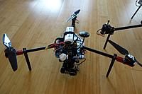 Name: DSC01592 (Large).JPG