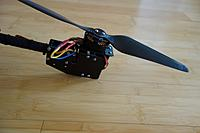 Name: DSC01594 (Large).JPG