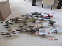 Name: Micro WWI Birds 12-25-12 001.jpg