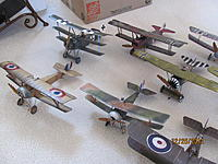 Name: Micro WWI Birds 12-25-12 003.jpg