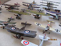 Name: Micro WWI Birds 12-25-12 004.jpg