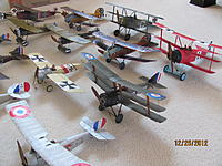 Name: Micro WWI Birds 12-25-12 005.jpg