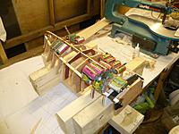 Name: P1060521.jpg