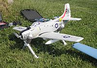 Name: P8220631.jpg