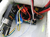 Name: IMG_6984.jpg