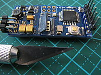 Name: IMG_7120.jpg