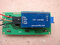 Name: IMG_9098.JPG