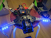 Name: IMG_9105.JPG