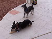 Name: 101_1045.jpg