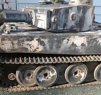 Name: tiger2.jpg