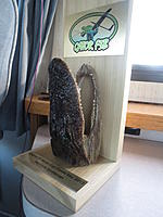 Name: F3B Gator 2013 2nd. and 3rd day! 047.jpg