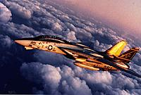 Name: Swordsmen F-14-2.jpg Views: 22 Size: 96.2 KB Description:
