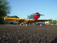 Name: GWS-T6 003.jpg